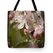 Apple Flowers Tote Bag