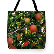 Apple Harvest - Digital Painting Tote Bag
