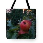 Apple Sunset Tote Bag