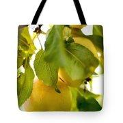 Apple Taste Of Summer 1 Tote Bag