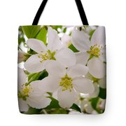 Apple Tree Blossoms Tote Bag