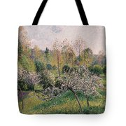 Apple Trees In Blossom Tote Bag
