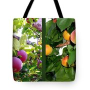 Apples And Apricots Tote Bag by Will Borden