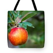 Apples Hanging In Orchard Tote Bag