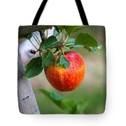 Apples Hanging In The Orchard Tote Bag
