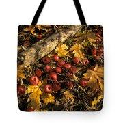 Apples In Fall Tote Bag