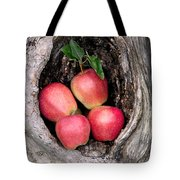 Apples In Tree Tote Bag