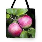 2 Apples On Tree Tote Bag