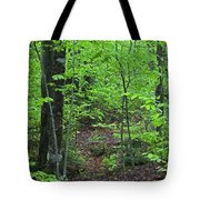 Approaching Sullivan Tote Bag