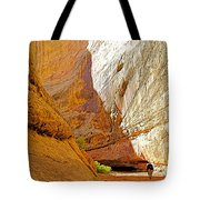 Approaching The Shadow In Grand Wash In Capitol Reef National Park-utah Tote Bag