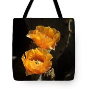 Apricot Blossoms Tote Bag
