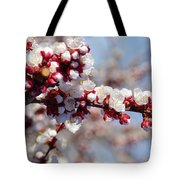 Apricot Blossoms Popping Tote Bag