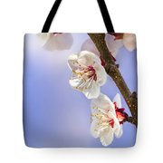 Apricot Flowers Tote Bag