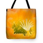 Apricot Glow Tote Bag