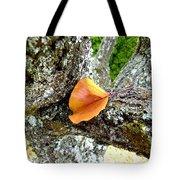 Apricot Leaf And Lichen Tote Bag