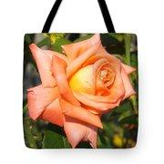 Apricot Nectar Rose Tote Bag