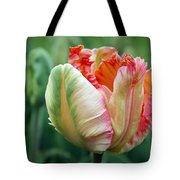 Apricot Parrot Tulip Tote Bag