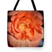 Apricot Pink Tuberous Begonia Tote Bag