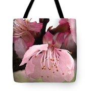 Apricot Spring Tote Bag