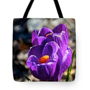 April Crocus' Tote Bag