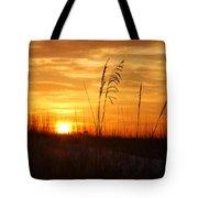 April Morning Grasses Tote Bag