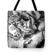 April Rose Bw Palm Springs Tote Bag