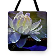 Aquatic Beauty In White Tote Bag by Julie Palencia