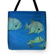 Aquatic Blues Tote Bag