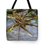 Aquatic Hunting Spider Tote Bag