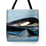 Aquatic Immersion Tote Bag