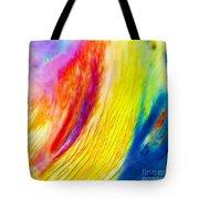 Arabian Desert Rainbow Tote Bag
