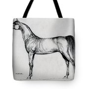 Arabian Horse Drawing 34 Tote Bag