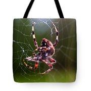 Arachnophobia Tote Bag