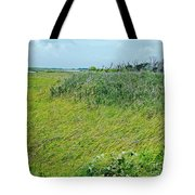 Aransas Nwr Coastal Grasses Tote Bag