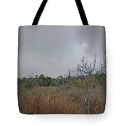 Aransas Nwr Texas Coastland Tote Bag