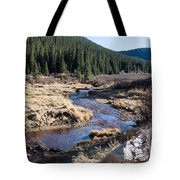 Arapaho National Forest Tote Bag