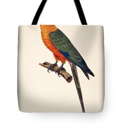 Aratinga Chrysocephalus  Tote Bag