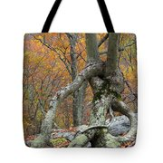 Arboreal Architecture Tote Bag