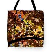 Arboretum Fall Tote Bag