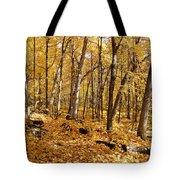 Arboretum Trail Tote Bag
