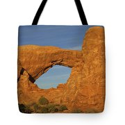 Arch 14 Tote Bag