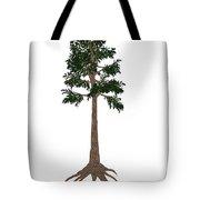 Archaeopteris Prehistoric Tree Tote Bag