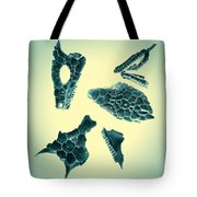 Archaeopteryx Tote Bag