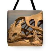 Archelon Relic Tote Bag