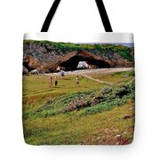 Arches On West Coast-nl Tote Bag