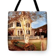Architecture - Woodstock Vt - Where I Live Tote Bag by Mike Savad