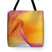 Arcing To Its Own Interior Tote Bag