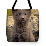 Arctic Fox Pup Alaska Wildlife Tote Bag