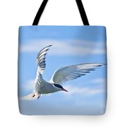 Arctic Tern Sterna Paradisaea In Flight Tote Bag