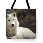 Arctic Wolf Adult Tote Bag